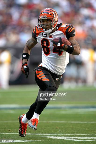 Wide receiver TJ Houshmandzadeh of the Cincinnati Bengals carries ball against the Houston Texans on October 26 2008 at Reliant Stadium in Houston...