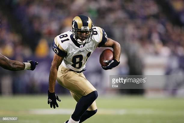 Wide receiver Torry Holt of the St Louis Rams carries the ball against the Minnesota Vikings on December 11 2005 at the Metrodome in Minneapolis...