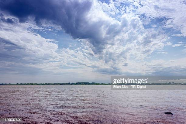 wide river and its archipelagos in the sky line  brown water - marrom stock pictures, royalty-free photos & images