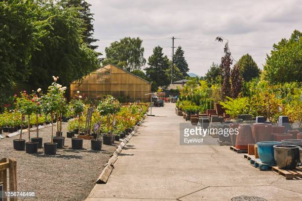 wide shot of a nursery and a greenhouse. - 植物園 ストックフォトと画像