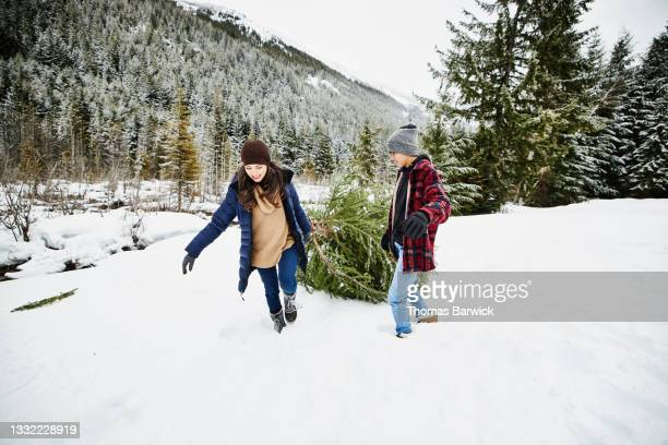 wide shot of mother and teenage son dragging freshly cut christmas tree through snow on winter afternoon - embellished jacket stock pictures, royalty-free photos & images