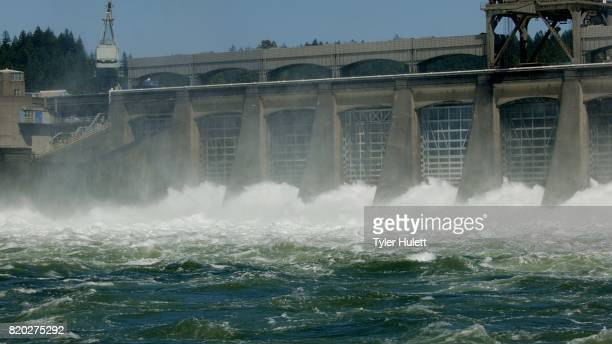 wide shot of spillway bonneville dam - hydroelectric power station stock photos and pictures