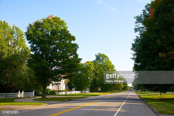 Wide tree-lined main street with no cars on road