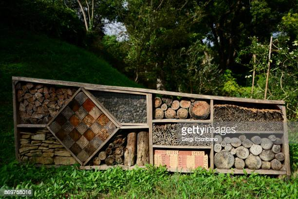 Wide view of a hotel for bees in autumn in the countryside