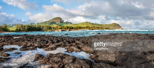 bred utsikt över kawailoa bay - tidvattensbassäng bildbanksfoton och bilder