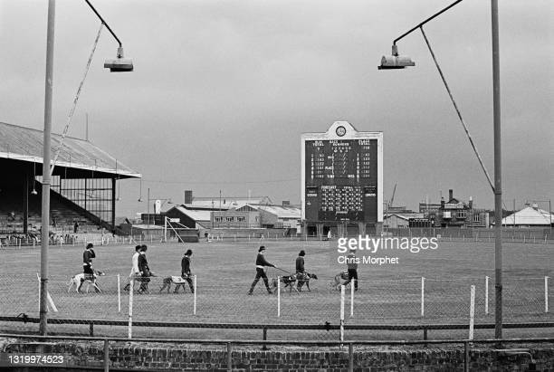 Wide view of Park Royal Greyhound Stadium with odds boards in the background and dog handlers and greyhounds parading in foreground, London, UK,...