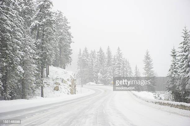 wide windy highway blizzard thru snow covered forest - blizzard stock pictures, royalty-free photos & images