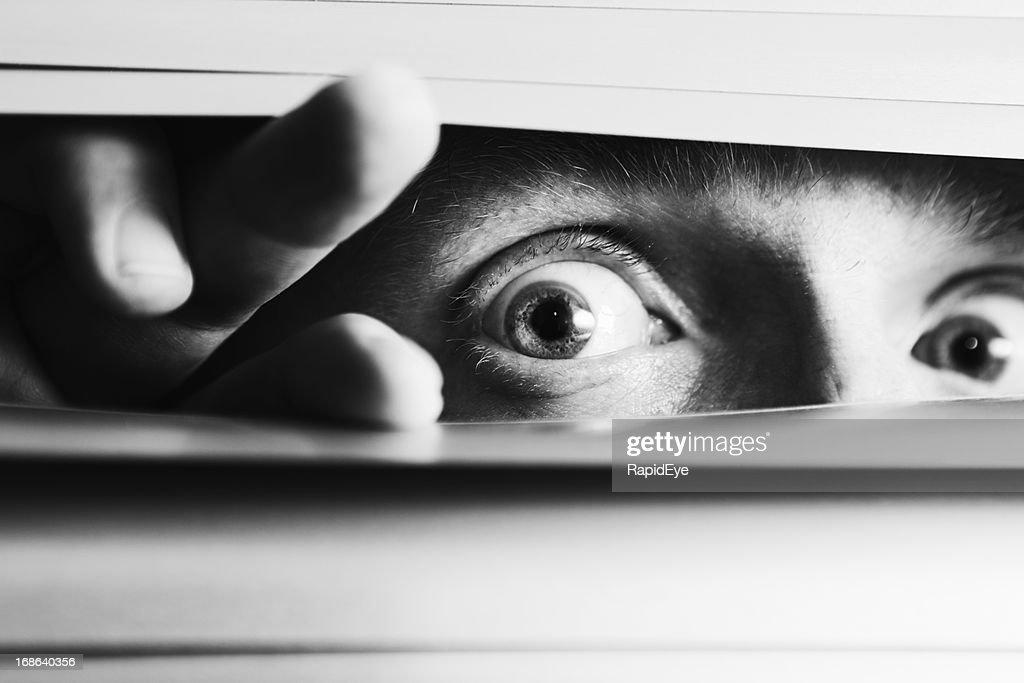 Wide-eyed terrified man peeping though venetian blinds : Stock Photo