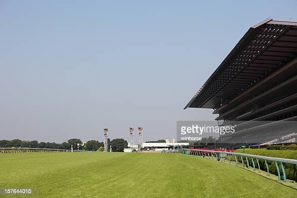 wide-view of empty horse racing track with big stands - horse racecourse stock photos and pictures
