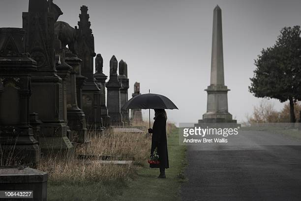 widow bringing roses to a grave in a cemetery - mourning stock pictures, royalty-free photos & images