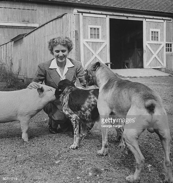 Wife of Time Inc founder Clare Boothe Luce petting pig pair of dogs on Luce farm NEAR GRENNWICH