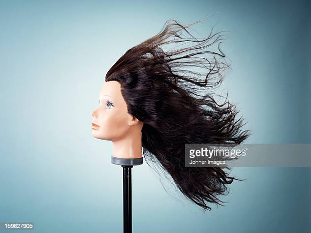 wig on dressmakers model - brown hair stock pictures, royalty-free photos & images