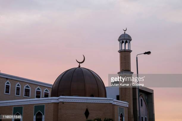 wightman road islamic cultural society, london, u.k. - mosque stock pictures, royalty-free photos & images