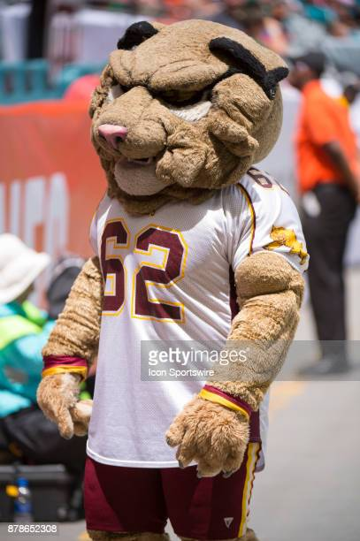 Wil D Cat BethuneCookman Wildcats mascot during the NCAA football game between the BethuneCookman Wildcats and the University of Miami Hurricanes at...