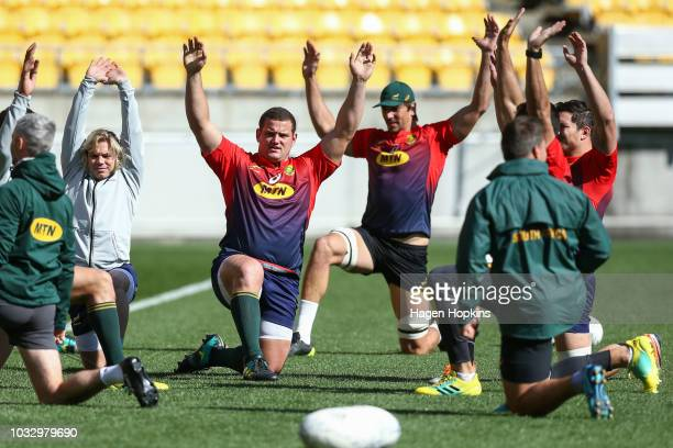 Wilco Louw stretches during the South Africa Springboks Captain's Run at Westpac Stadium on September 14 2018 in Wellington New Zealand