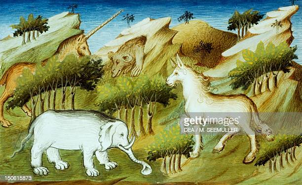 Wild animals in Mien forest miniature from Livre des merveilles du monde by Marco Polo and Rustichello France 15th Century