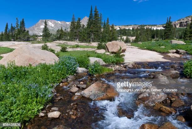 Wild Basin Summer Landscape