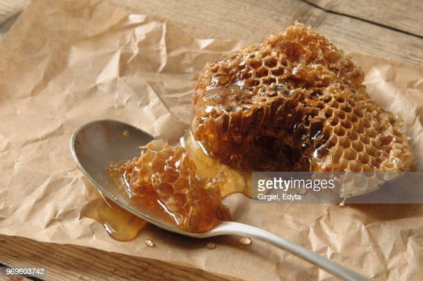 a wild bee honeycomb on parchment paper and a spoon - wild honey spoonful stock pictures, royalty-free photos & images