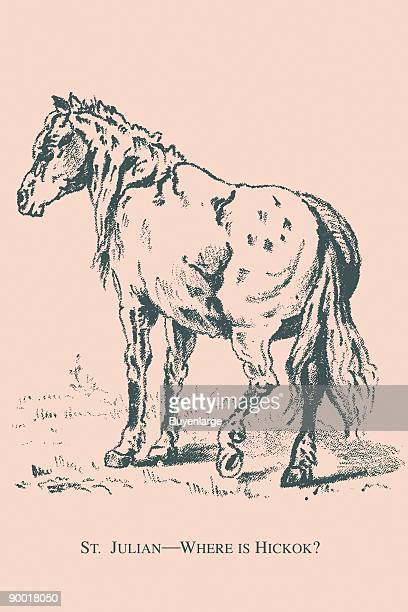 Wild Bill Hickcock's horse hides the face of his owner can you find it This image dates from the turn of the century and was the face of a trade card...