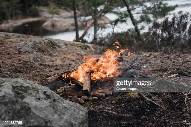 wild campfire next to the water in a national park in sweden - flame logo stock pictures, royalty-free photos & images
