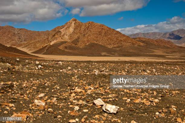 wild desert-like landscape in the richtersveld, ai-ais richtersveld transfrontier park, northern cape, south africa - ナマクワランド ストックフォトと画像