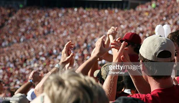 wild fans at sporting event - supporter stock pictures, royalty-free photos & images