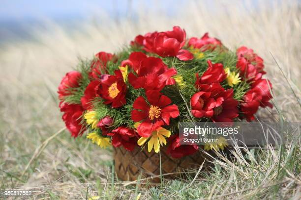 Wild flowers in a basket standing on the ground