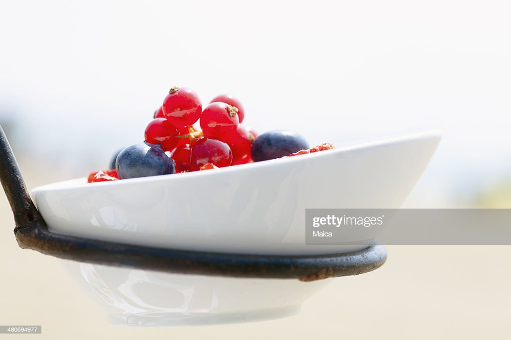 Wild fruits dessert : Stock Photo