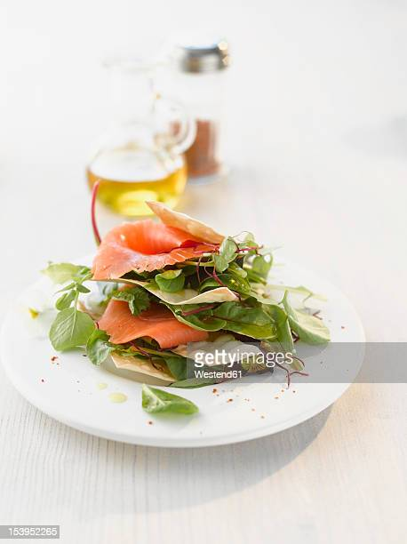 Wild herb salad with salmon and strudel on plate