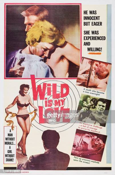 Wild Is My Love poster US poster art top from left Elizabeth MacRae Paul Hampton 1963
