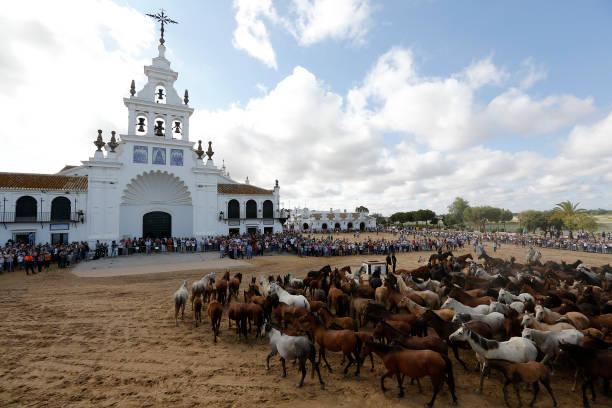 ESP: Rounding Up Horses For Annual 'Saca De Las Yeguas' In Almonte