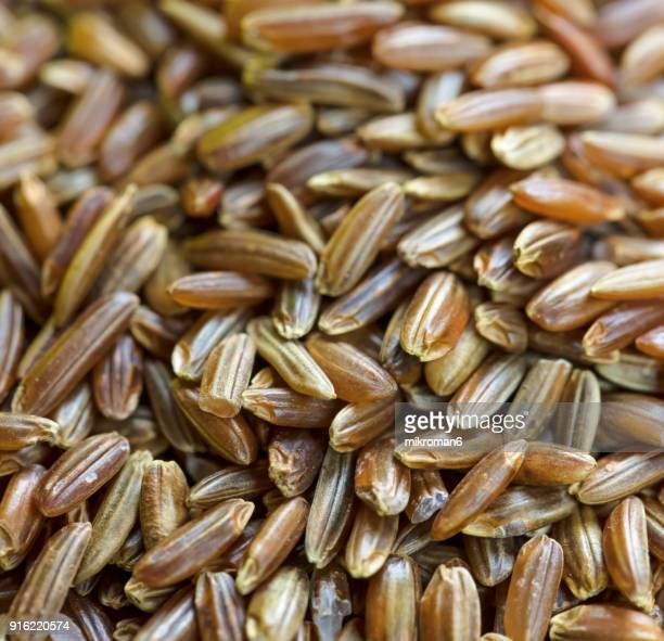 wild, red rice directly above view, macro shot. traditional food. - black rice stock pictures, royalty-free photos & images