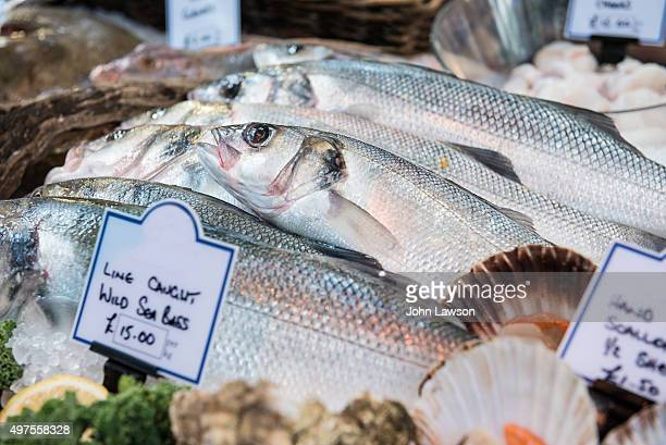 Wild Sea Bass on sale at a market in London