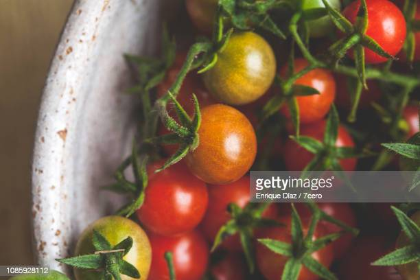 Wild Sown Cherry Tomatoes, Close-Up 1