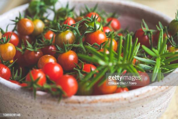 Wild Sown Cherry Tomatoes in a Bowl with Rosemary