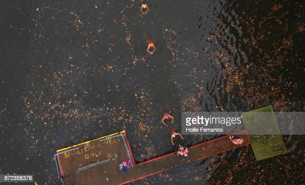 wild swimming women's group autumnal swim ariel view - hampstead heath stock pictures, royalty-free photos & images