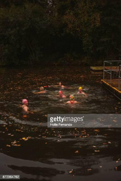 wild swimming women's group autumnal swim - hampstead heath stock pictures, royalty-free photos & images