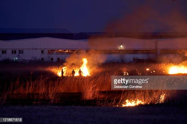 wild that caught fire at night, and firefighters came to the emergency to put out the fire, near the warehouses. - harvest icon stock pictures, royalty-free photos & images