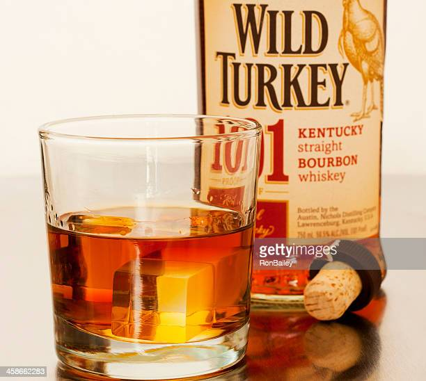 wild turkey 101 - wild turkey stock photos and pictures