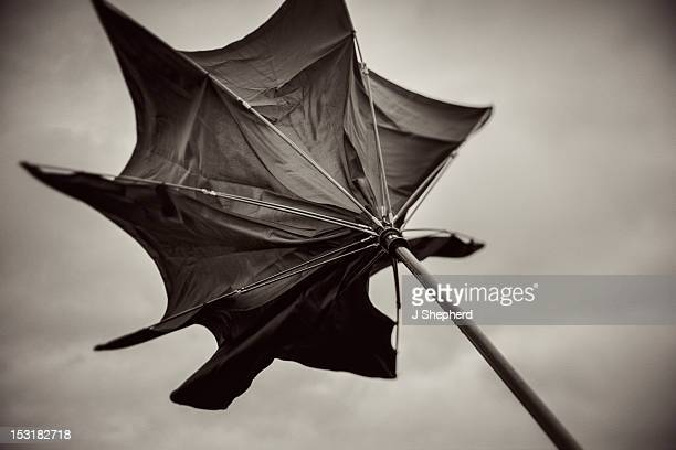 wild umbrella - inside out stock pictures, royalty-free photos & images