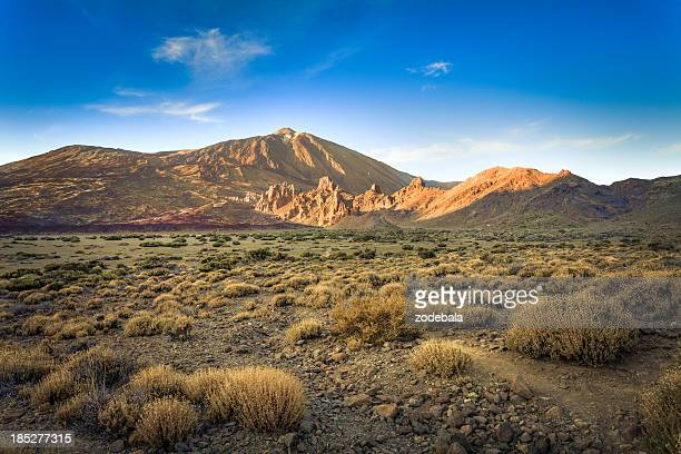 wild valley in el teide national park, canary islands - pico de teide stock pictures, royalty-free photos & images