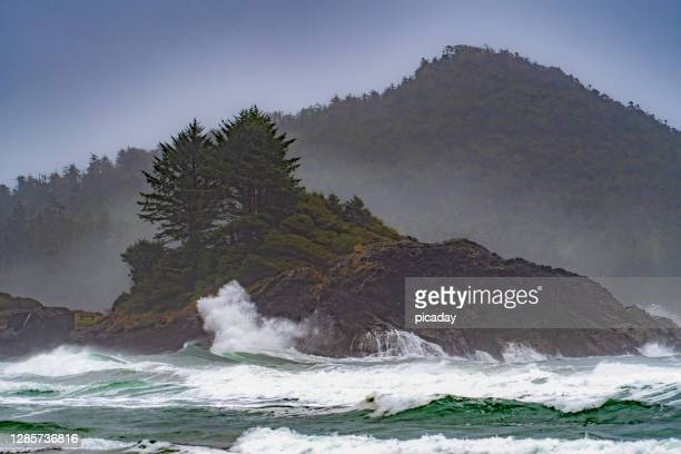 wild west coast waves - british columbia stock pictures, royalty-free photos & images