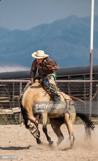 wild west rodeo cowboy on bucking bronco horse