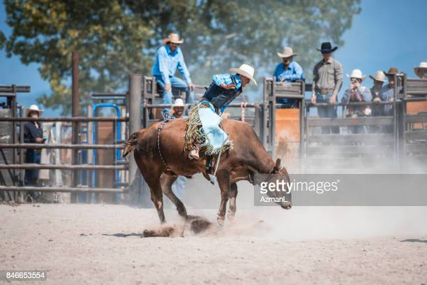 wild, wild west! - bucking stock photos and pictures