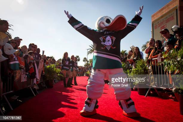 Wild Wing pumps up the crowd prior to the game between the Anaheim Ducks and the Detroit Red Wings on October 8 2018 at Honda Center in Anaheim...