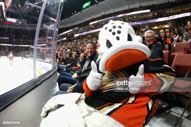 Wild Wing the mascot for the Anaheim Ducks gives a thumbs up during the first period of a game against the Calgary Flames at Honda Center on December...