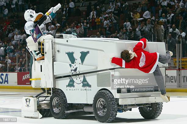 Wild Wing the mascot for the Mighty Ducks of Anaheim rides on the zamboni during the game against the Detroit Red Wings in round one of the NHL 2003...