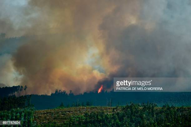 A wildfire burns a forest area in Castanheira de Pera on June 19 2017 More than 1000 firefighters are still trying to control the huge forest fire...