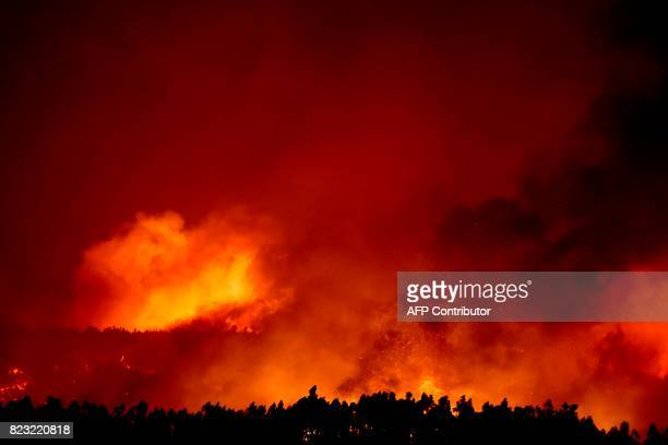 A wildfire burns in the forest surrounding Macao central Portugal on July 26 2017 / AFP PHOTO / PATRICIA DE MELO MOREIRA