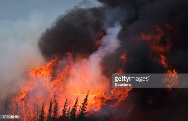 A wildfire burns on Highway 63 south of Fort McMurray Alberta Canada on Saturday May 7 2016 Wildfires raging through Alberta have spread to the main...